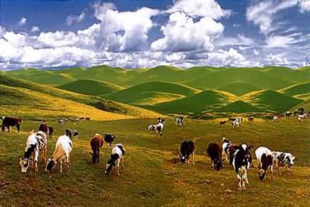 新疆天气预报10天_新疆天气预报30天一周查询